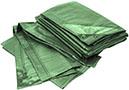 Bio Green Lona RX90-4X6-G Rainexo, 4 x 6 m, 90 g/m²